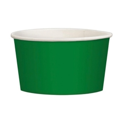 Green Plastic Bowl