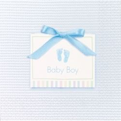 Baby Soft Blue Baby Party Napkins