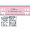Birthday Bunny Party Giant Personnalised Banner